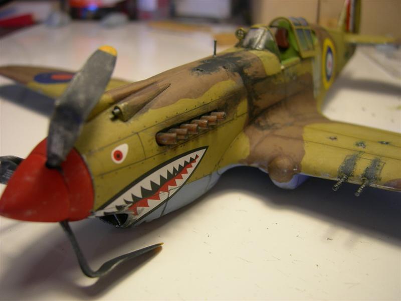 P-40BBUILD4PBY-5011Medium.jpg