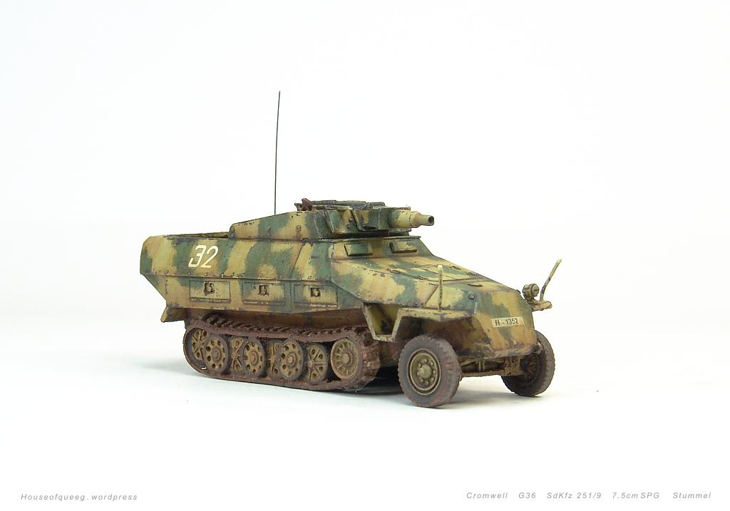 G36SdKfz251-9Stummelp01.jpg