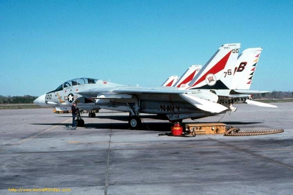 F-14AVF-141976Bicentennial.jpg