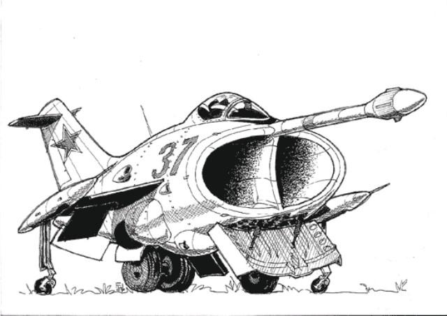 yak36.jpg